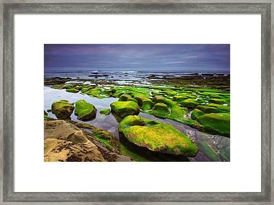 La Jolla California Framed Print