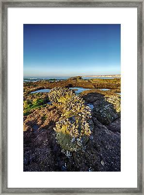 La Jolla Clam Bake 1 Framed Print by Scott Campbell