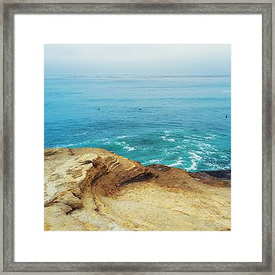 La Jolla Coast Seagull Nest Framed Print by Tanya Harrison