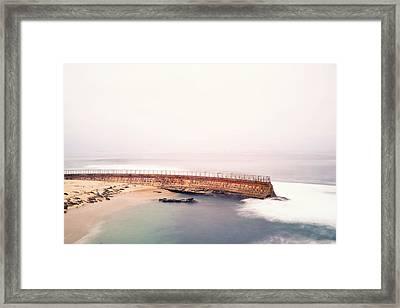 La Jolla Seawall And Seals Framed Print by Tanya Harrison