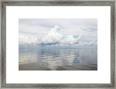 La, Lafitte, Airboat Swamp Tour Framed Print by Jamie and Judy Wild