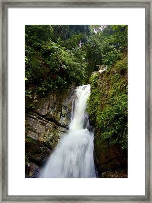 La Mina At El Yunque Framed Print