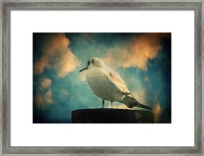 La Mouette Framed Print by Taylan Apukovska