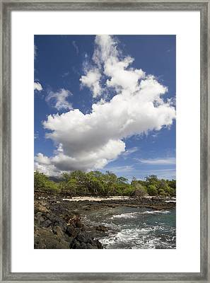 La Perouse Bay Framed Print by Jessica Velasco