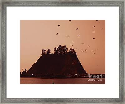 La Push Silhouette With Birds Framed Print by Kym Backland