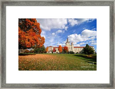 La Roche College On A Fall Day Framed Print by Amy Cicconi