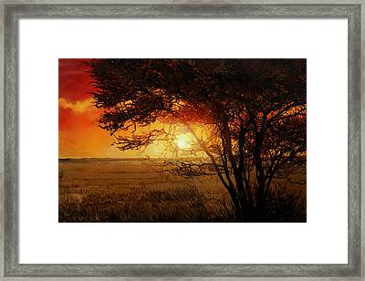 La Savana Al Tramonto Framed Print by Guido Borelli