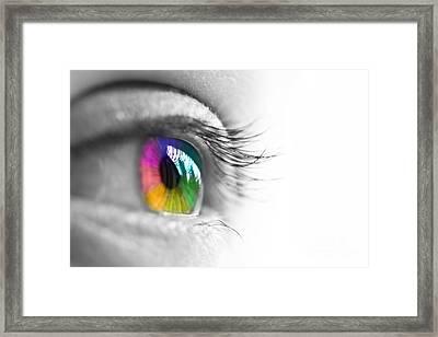 La Vie En Couleurs Framed Print