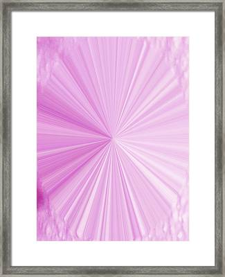 La Vie En Rose 01  3.23.14 Framed Print