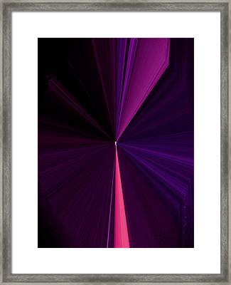 La Vie En Rose 04 3.23.14 Framed Print