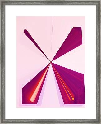 La Vie En Rose 14   3.23.14 Framed Print by Rozita Fogelman