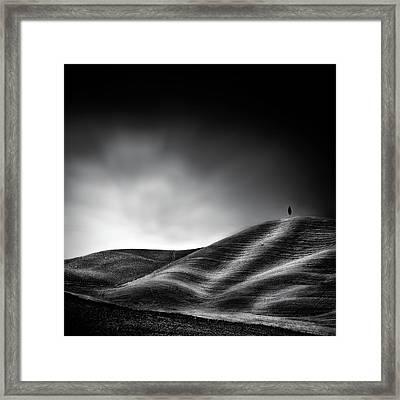 La Vie Reprendra Au Printemps Framed Print