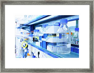 Lab Equipment Used In Cell Therapy Framed Print by Wladimir Bulgar