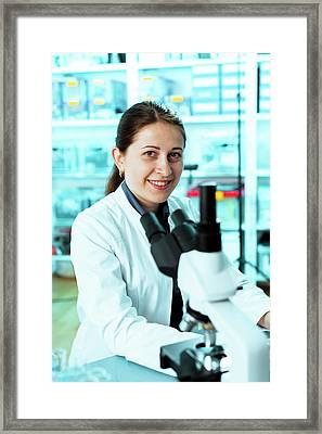 Lab Technician With A Microscope Framed Print by Wladimir Bulgar/science Photo Library