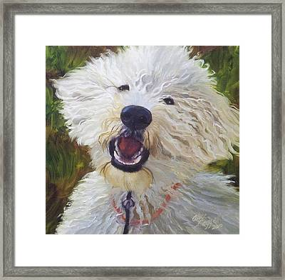 Labradoodle Framed Print by Alice Leggett