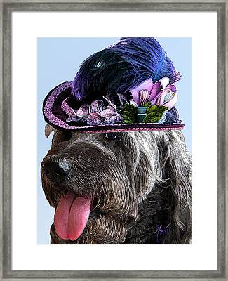 Labradoodle Trudy To The Derby Framed Print by Michele Avanti