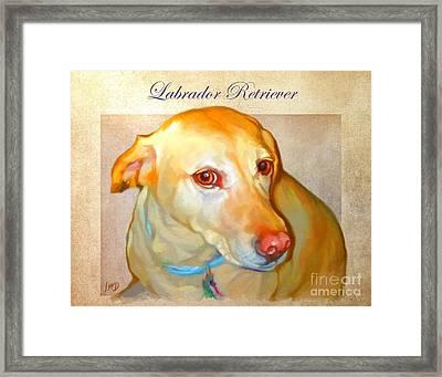 Labrador Art Framed Print by Iain McDonald