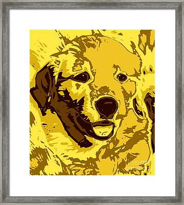 Labrador Framed Print by Chris Butler