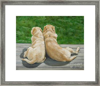 Labrador Lazy Afternoon Framed Print