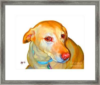 Labrador Retriever Art Framed Print