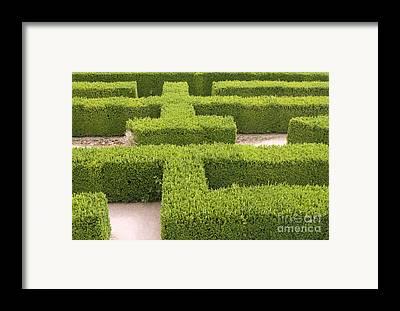 Sports Maze Framed Prints