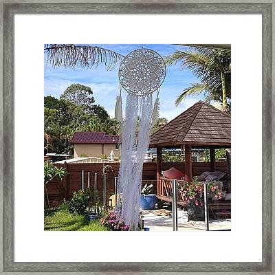 Lace Peacock Dreamcatcher - A Framed Print