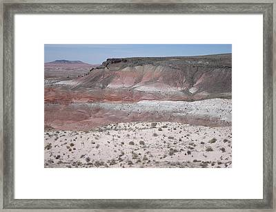 Lacey Point Framed Print