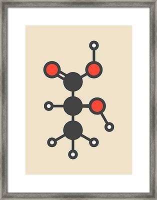 Lactic Acid Milk Sugar Molecule Framed Print
