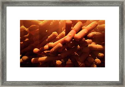 Lactobacillus Bacteria Framed Print by Thierry Berrod, Mona Lisa Production