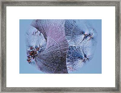 Lactose Crystals Framed Print