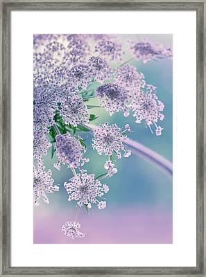 Beneath The Veil Framed Print