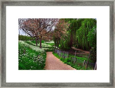 Lacy White And Viridian Green Of Dutch Spring Framed Print by Jenny Rainbow