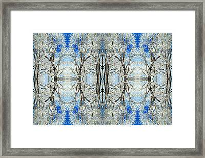 Lacy Winter Trees Abstract Art Photo Framed Print by Marianne Dow