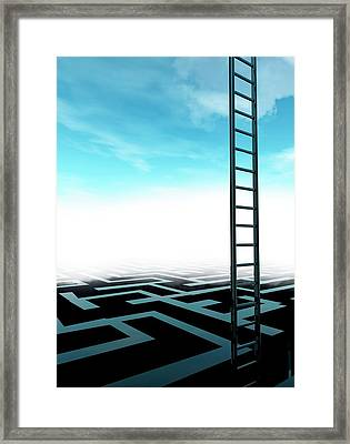 Ladder And Maze Framed Print by Victor Habbick Visions/science Photo Library