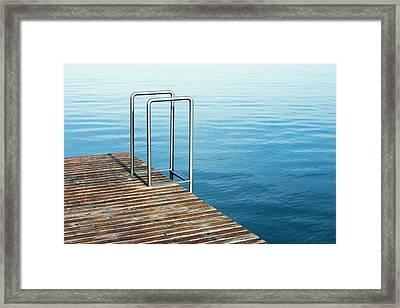 Ladder Framed Print