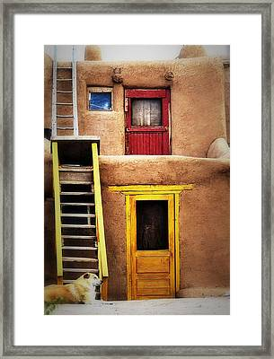 Ladders Doors And The Dog Framed Print