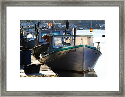 Lady Catherine Framed Print by Paul Noble