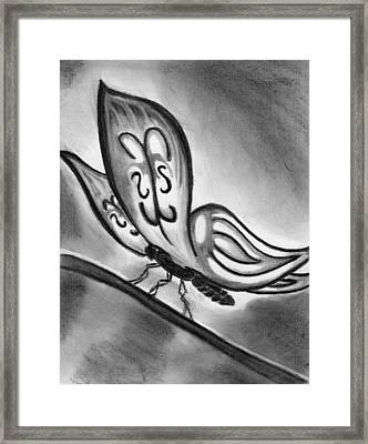 Lady Ghostwing Framed Print by Angie Brown