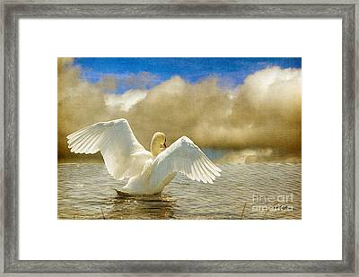 Lady-in-waiting Framed Print by Lois Bryan