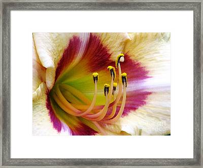 Lady Liberty Lily Framed Print