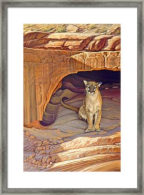 Lady Of The Canyon Framed Print by Paul Krapf