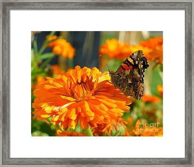 Lady On Orange Framed Print