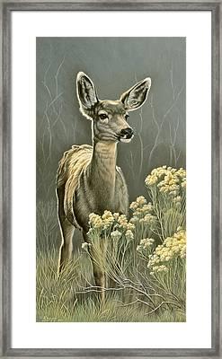 Lady Framed Print by Paul Krapf
