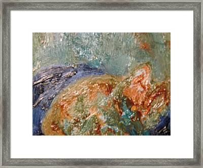 Lady The Cat Sleeping Soundly And Peacefully Framed Print