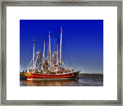 Lady Tiffany Framed Print by Barry Jones