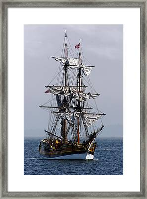 Lady Washington Framed Print by Randy  Foster