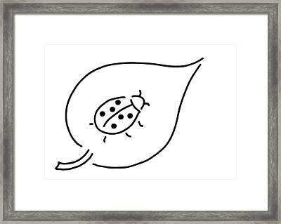 Ladybird Beetle Sheet Framed Print