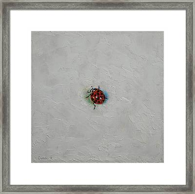 Ladybug Framed Print by Michael Creese