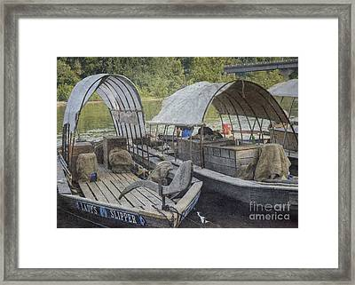 Framed Print featuring the photograph Ladys Slipper 2 by Pete Hellmann