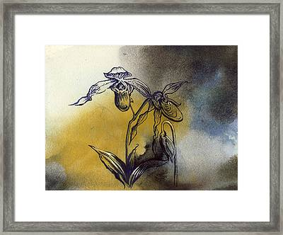 Ladyslipper Orchid Drawing Framed Print by Alfred Ng